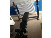 Powertec olympic weight bench