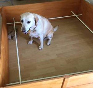 Whelping box for medium - large dog, used once Highland Park Gold Coast City Preview