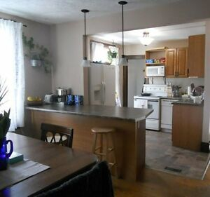 Beaut, Lrg 3 Bdr Apt-Working Professionals- walk Dwntn June 1