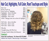 Free Hair Cut for Ladies by a Certified Mobile Hair Stylist.