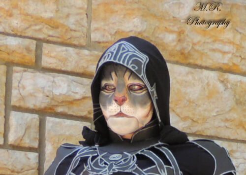 Khajiit cat prosthetic mask skyrim
