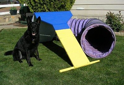 Dog Agility Contact Trainer & 10' tunnel Equipment Set
