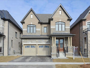One Of The Most Beautiful Detached - Ravine Lot