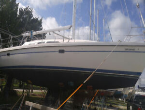 Voilier 2000 Catalina 380 Sailboat