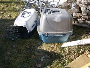 cat carrier and litter box