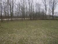 34,500.00~~175 ft x 225 ft BUILDING LOT ON PAVED ROAD!!