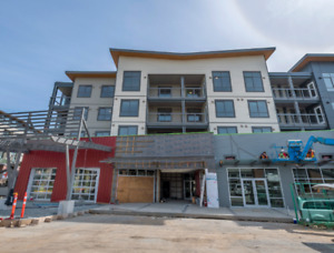 Brand New, Modern 2 & 3 Bedroom Apartments!! Great Location!