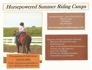 Summer Horse Camp / Riding Camp & Lessons