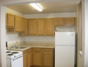 1 Bedroom Apartment For Rent $700.00 Heat Included