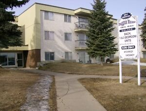 Duggan Manor 10615-40 ave Large 1 bedroom $875/month!