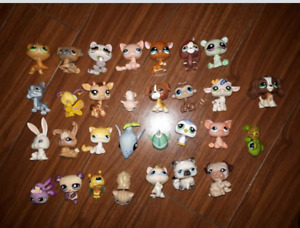 Littlest Pet Shops and Houses