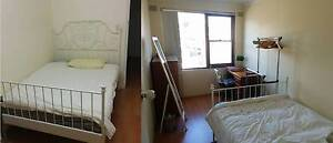Sunny furnished single Bedroom in Ashfield, close to station Ashfield Ashfield Area Preview