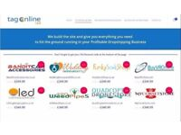 DropShipping Online Business Site
