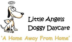 Doggy Daycare and Kennel-Free Boarding Services