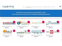 Online Business / ECommerce DropShipping Site for sale