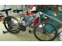 Boys mountain bike silverfox