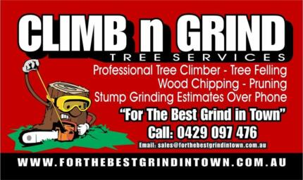 Climb n Grind Tree Services Thornlands Redland Area Preview