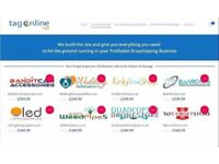 DropShipping Online Business For Sale   ECommerce DropShipping Site