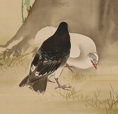 Pigeon JAPANESE PAINTING ANTIQUE HANGING SCROLL OLD From JAPAN Picture d861