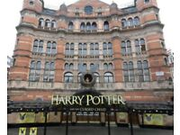 Harry Potter tickets x2 29/10, 2 showings
