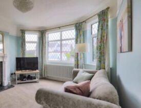 Laura Ashley Summer palace duck egg blue curtains 2x pair of W220xD224cm