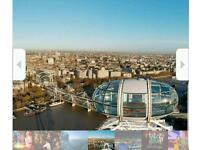 London Attraction (London Eye, Aquarium)