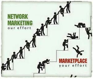 Organo Gold or other Network Marketing Distributor