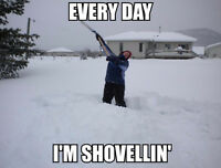 Will SHOVEL DRIVEWAY FOR BEER!
