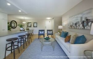 Newly Renovated One Bedroom Apartments for Rent in Milton!