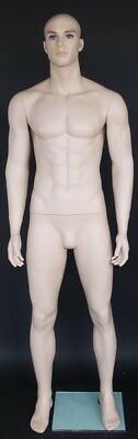 63 Tall Male Muscular Body Fullsize Mannequin Skintone Makeup M796ft 403140