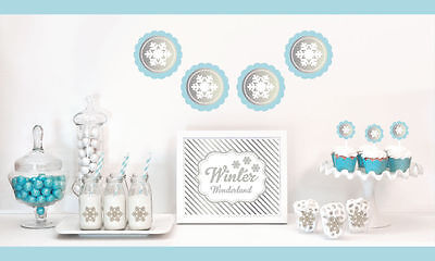 Silver And Glitter Bridal Shower Decorations Kit Winter Wedding Decorations