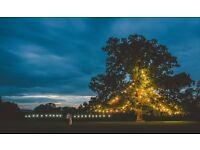 Best Quality Festoon Belt lights for Christmas , party , house , garden decoration, patio lighting