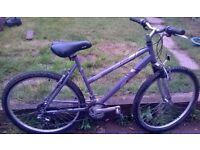 """Ladies 19"""" Raleigh mantis bike"""