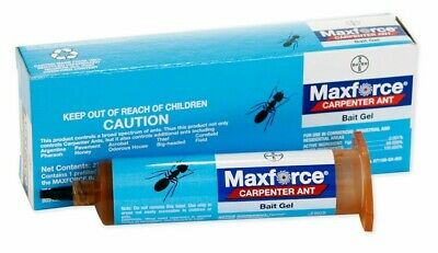 Ant Killer Gel (Maxforce Carpenter Ant Bait Gel Professional Capenter Ant Killer Bait Gel Bayer)