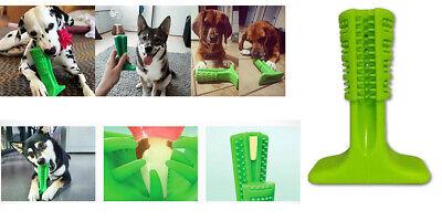 Spazzolino per cani, igene orale cane, spazzolino da masticare, pulizia denti