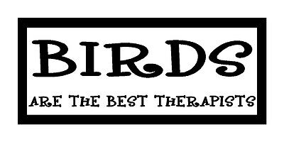 Birds Are The Best Therapist Funny Unique Bird Lover Magnet for Fridge Or (Best Chick Magnet Car)