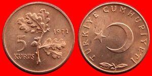 5 KURUS 1971 SIN CIRCULAR TURQUIA-0289SC - España - En caso de que el articulo no sea de su agrado dispone de un plazo de catorce dias para su devolucion. Para el reembolso el articulo debe estar en las mismas condiciones en las que se envio. Los gastos de envio y las comisiones de ebay corren po - España