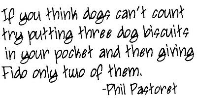 Unmounted Rubber Stamps, Dog Rubber Stamps, Dog Sayings, Humorous, Dog Quotes