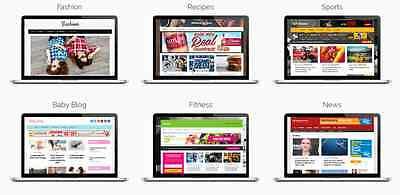 100 Established Clickbank Adsense Make Money Wordpress Websites Web Designer