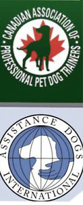 Dog lovers needed for research diagnostic exam. Please help!