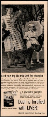 1954 DASH Dog Food - Cute Kerry Blue Terrier dog- Mother & Daughter- VINTAGE AD