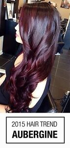 Tape Hair extensions and everything else! Cambridge Kitchener Area image 7