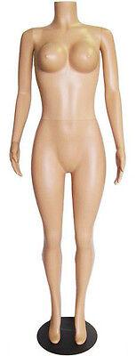 Mn-238 Fleshtone Plastic Busty Headless Ladies Full Size Mannequin