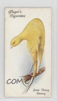 1933 Player's Aviary and Cage Birds Tobacco Base #11 Scots Fancy Canary Card 2h8