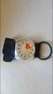 Altimeter for wing /sky sports