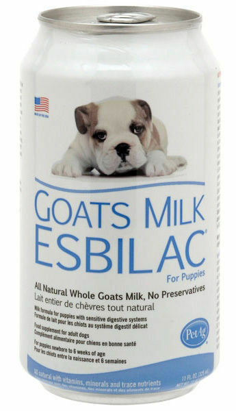Goats Milk For Dogs Uk