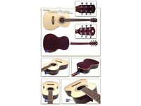 Fender gdp 100 parlour guitar.