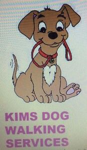 Kim's dog walking services