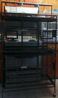 Brand new,never used. Double breeder bird cage with play top