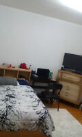 Room for rent near humber lakeshore campus for $500